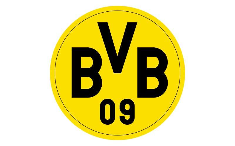 logo_master_800x500_bvb