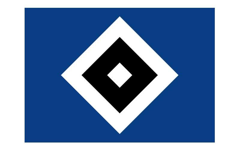 logo_master_800x500_hsv